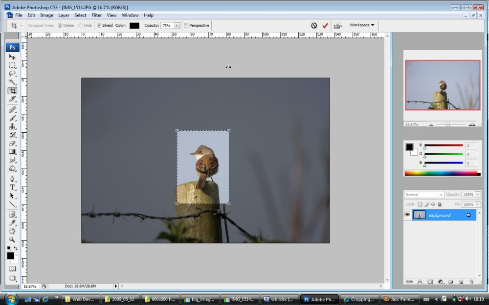 Photoshop tutorial cropping and resizing adode photoshop cs3 ccuart Gallery